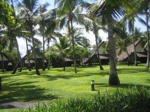 Complexe hotel la Pirogue et hotel Sugar Beach à Flic en Flac dans ILE MAURICE iles-maurices-janvier-075-300x224